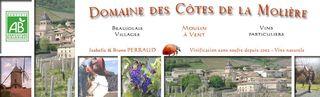 Blog Domaine Côtes de la Molière